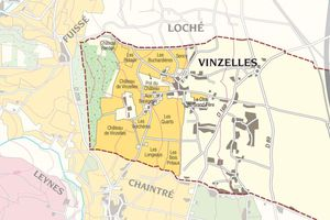 Les blancs du Sud de la Bourgogne: Pouilly-Vinzelles