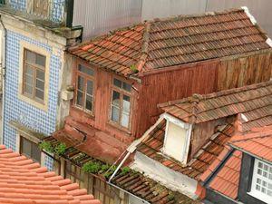 """Près de la tour """"dos Clérigos"""", on a construit un centre commercial en béton, dissimulé sous un toit végétalisé extrêmement bien entretenu tandis que dans la même rue, les toits des maisons abandonnées se couvrent de végétation spontanée"""