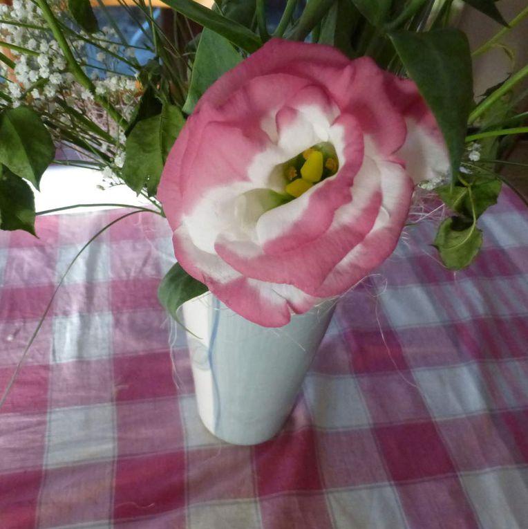 """Fleurs diverses et variées: toutes (sauf une) sont photographiées """"at home"""""""