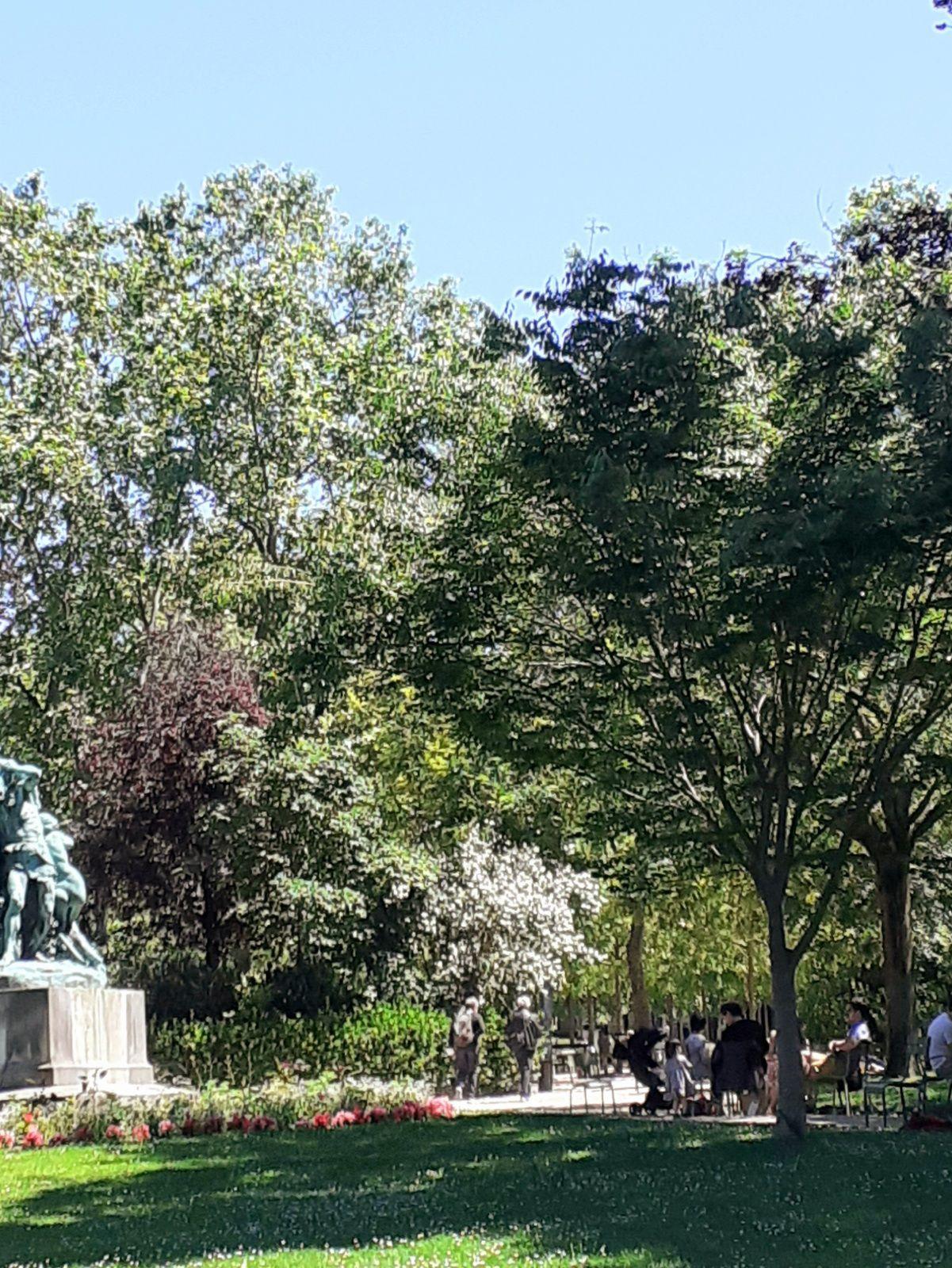 Paris sous le soleil de juin
