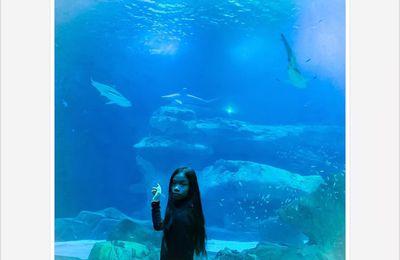 Halloween à l'Aquarium de Paris