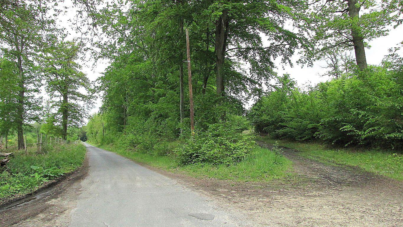 Randonnée en Forêt de Laigue_sur le Mont Renard et le Mont l'Ecange