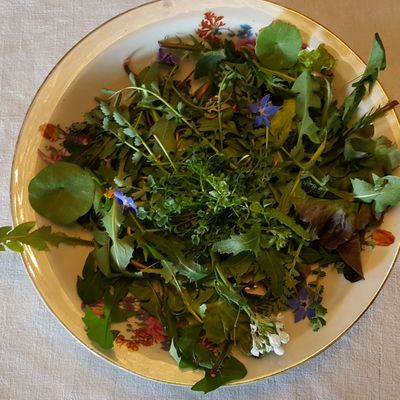 267 SALADE AUX HERBES SAUVAGES