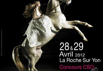 L'affiche officielle du salon du cheval de La Roche sur Yon