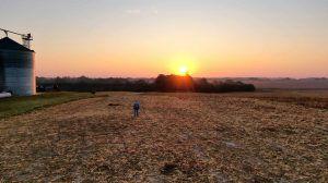 Les pratiques de sans-labour dans les zones vulnérables réduisent radicalement l'érosion des sols