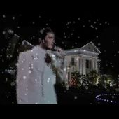 Elvis Presley - If Every day Could Be Like Christmas