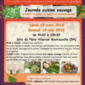 Journées cuisine sauvage au Père Hilarion avril et mai 2018 - Le blog de délicieux sortilèges