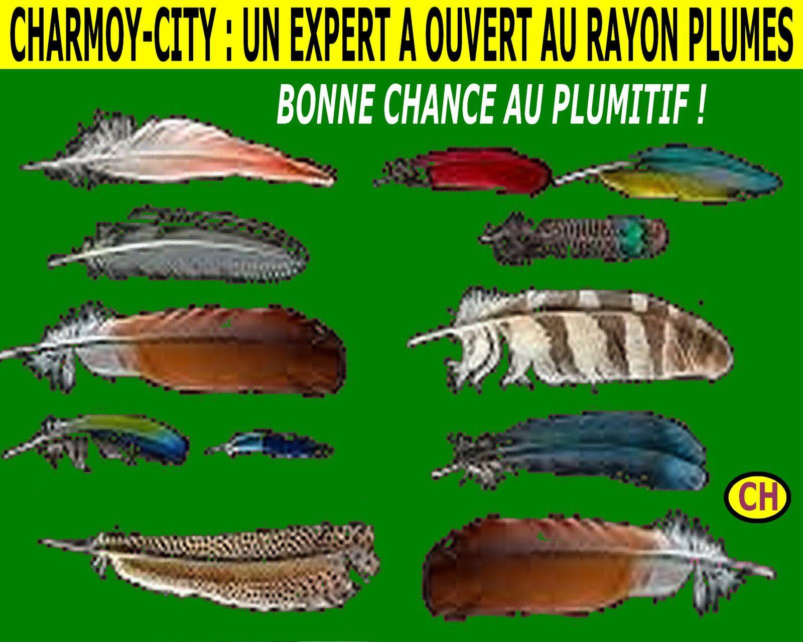 CHARMOY-CITY : QUAND L'EXPERT EN PLUMES TUTOIE SON EX-PRÉSIDENT - du 12 octobre 2021 (J+4682 après le vote négatif fondateur)