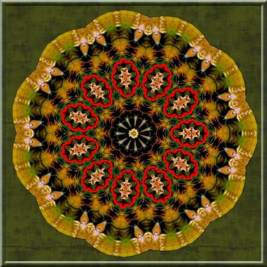 Fait avec http://krazydad.com/kaleido/ et PhotoFiltre