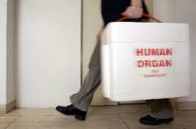 Prélèvement d'organes sur personne décédée: homologation des règles de bonnes pratiques et discussion de l'article 46ter du PLS Touraine