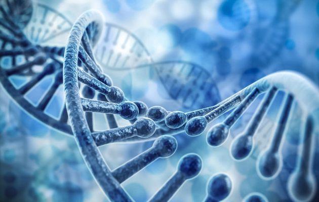 Des chercheurs découvrent que vapoter modifie l'ADN et peut provoquer des cancers