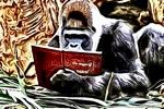 Chris The Story Reading Ape's Blog READER – WRITER – RESOURCES – & MORE