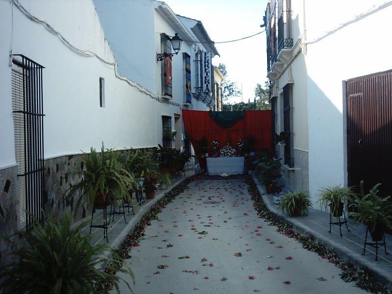 Badolatosa-Corpus-Christi-2010
