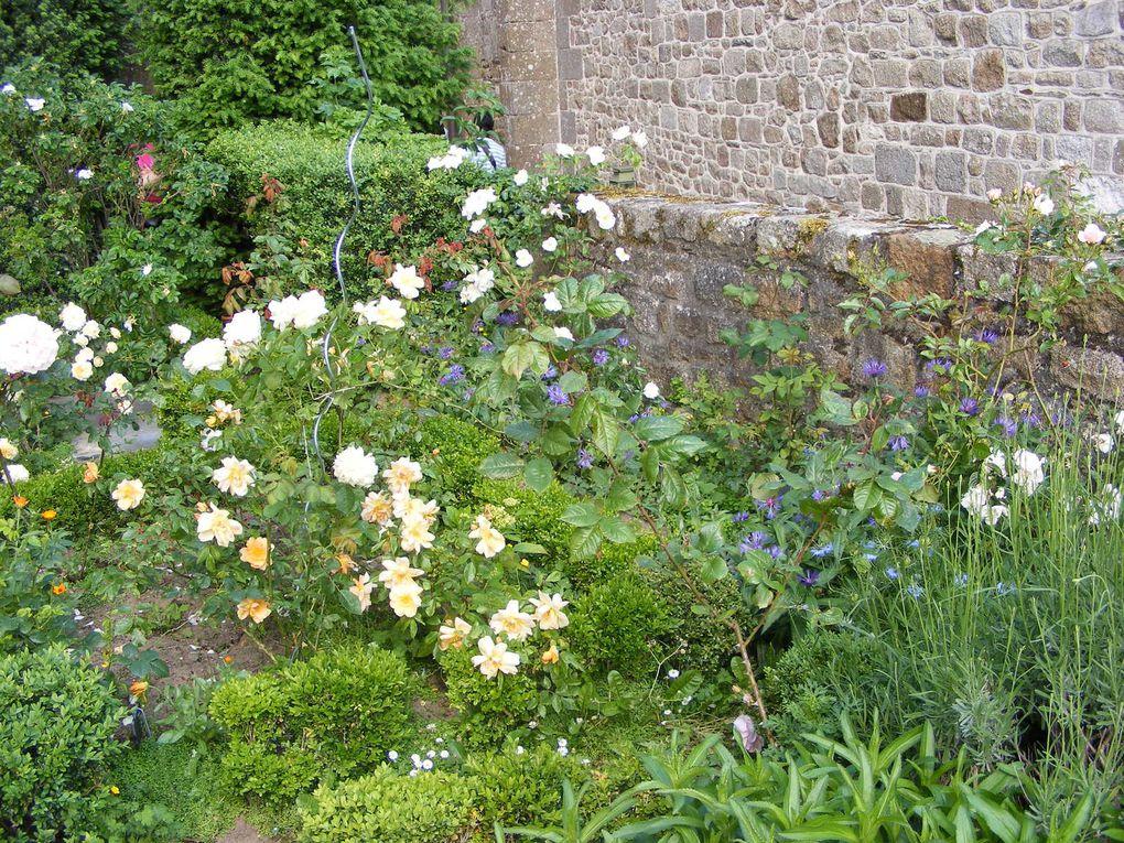 Mes Jardins Rose