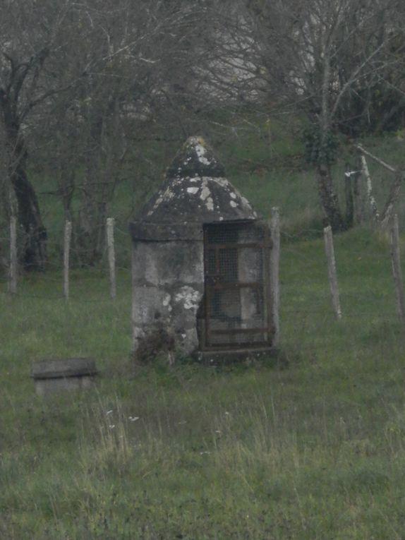 Album - Les-puits