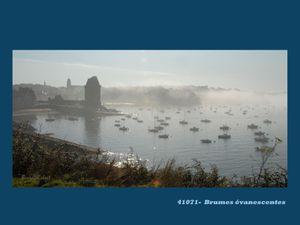 Petit coup de Muscadets & Prologue Tour Bretagne