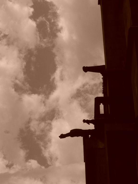 Album - Freiburg - Marseille - Aix - Clermont-Ferrand (juillet 2011)