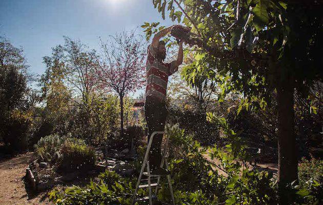 le jardin partagé cultive bien plus que la terre (Article de Reporterre, le quotidien de l'écologie s'est déplacé à Fontbarlettes)