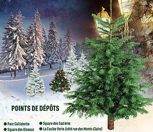 COLOMBES : RECYCLEZ VOTRE SAPIN !