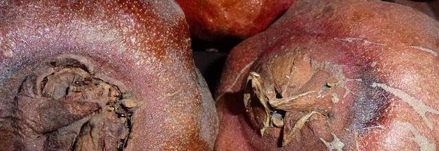 La grenade...le fruit santé venant du sud