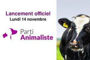 """Animal Politique : """"Le manifeste"""" à suivre"""