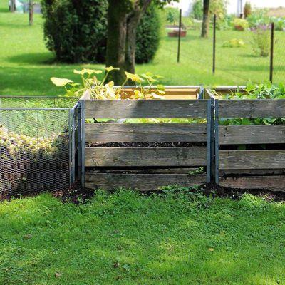 Le compost, levain du sol