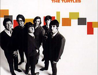 Youtube turtles happy together