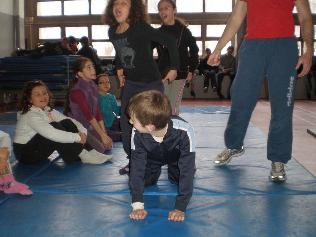 Natation 4h au quotidien pdt 5 j Initiation Tir et Cirque Footing matinaux