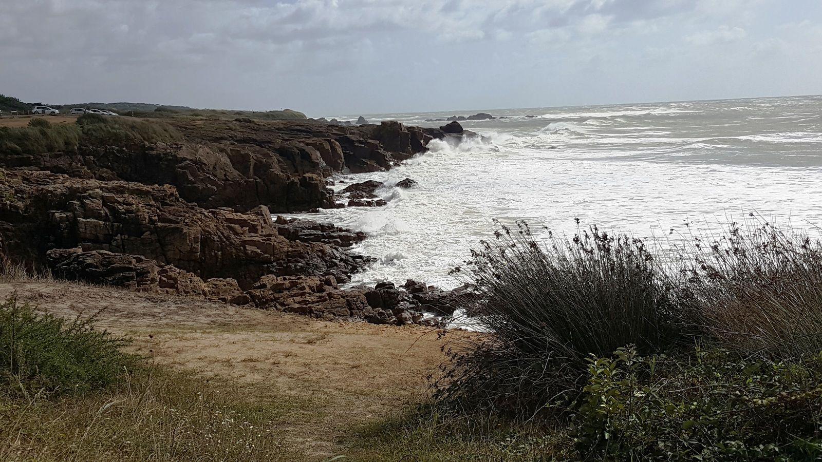 Vagues sur la côte sauvage du château d'Olonne