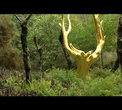 mythique forêt de Brocéliande