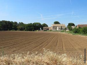 Un joli mas provençal (le tracteur est en train de semer)