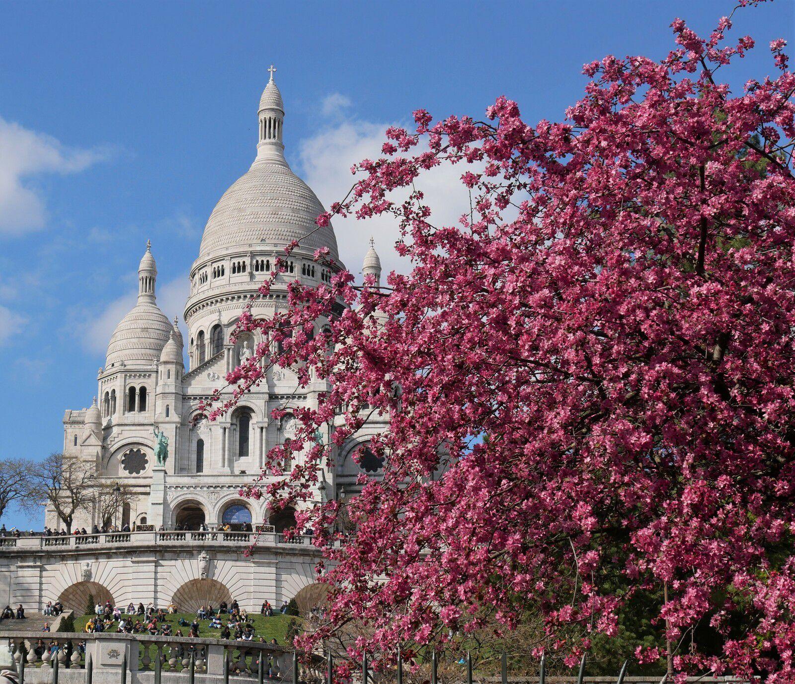 Avril 2021. Album photos, jour après jour. Montmartre.