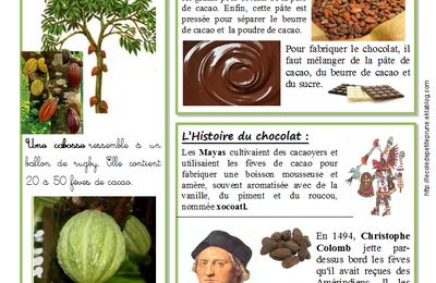 Au pays du chocolat