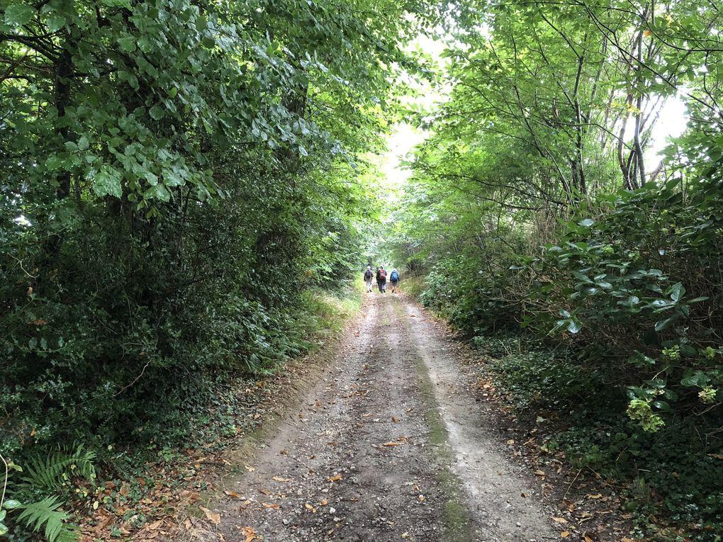 Petite randonnée autour de Locronan - Bretagne 2018.
