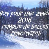 5 Bons et cartes magiques pour une très belle année 2016 - Hélène SF