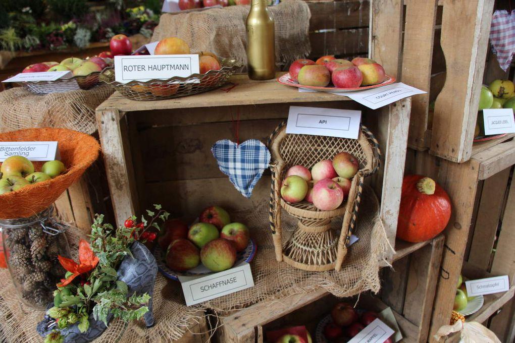 Pâtisseries  et expo fruits