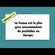 Encore une baliverne démontée par Agriculture&Environnement : « La France est le plus gros consommateur de pesticides en Europe »
