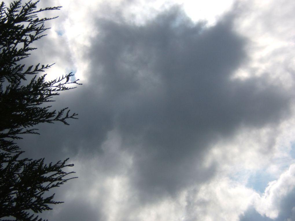 """Ciel photographié chaque lundi pour """"PETIT COIN DE CIEL"""""""