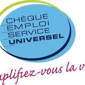 Service paysagiste - Michaël coach jardin à Angers