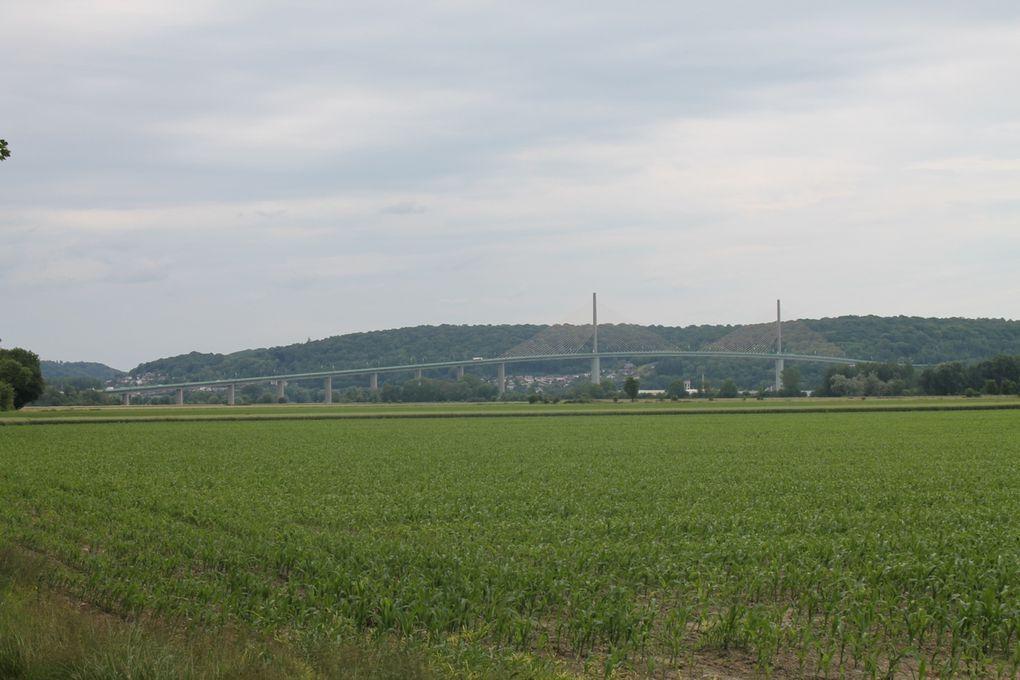 7 - Du château du Taillis à la ferme de la Mare ...
