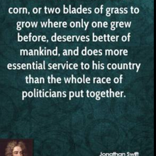 Deux brins d'herbe: l'impact de la Révolution Verte