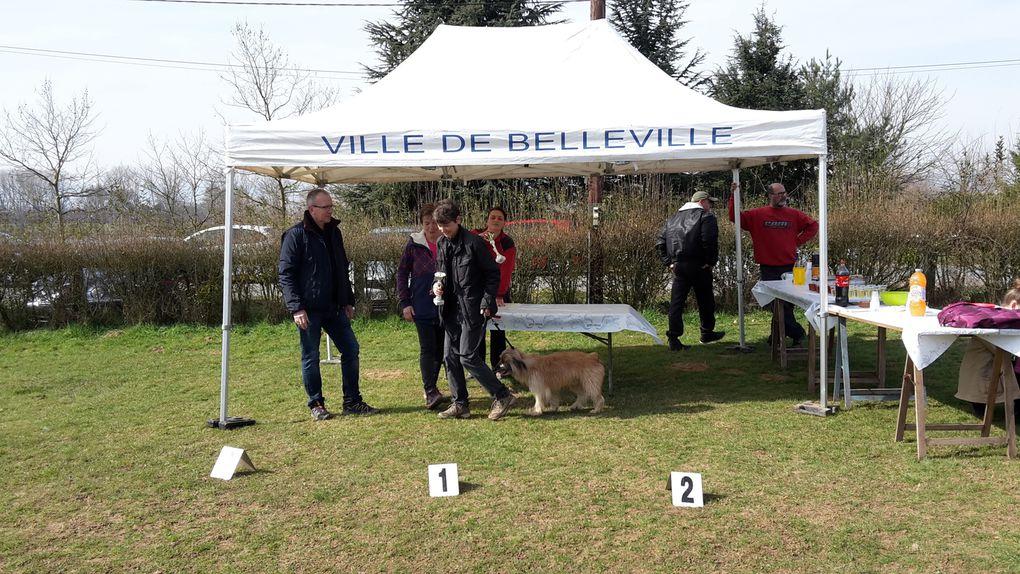 Album - Belleville-agility-mars-2015