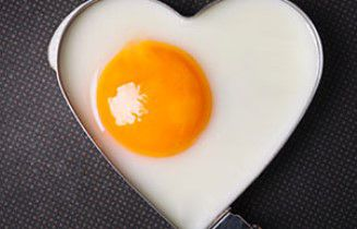 Le cholestérol n'est pas responsable des maladies cardiovasculaires