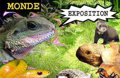 EXPOSITION 'FAUNE ET FLORE DU MONDE'