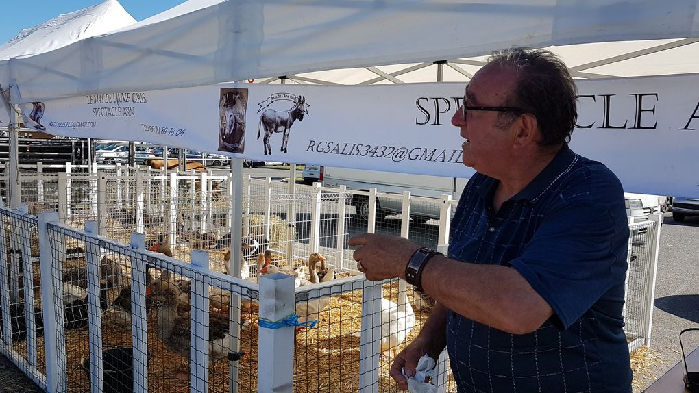 Mane. René Grassi et ses animaux