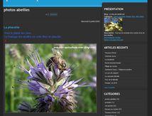 Blog apiculture