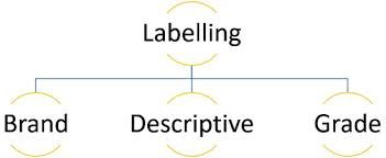 Labelling Market Report Application and Regional Growth Forecast 2025