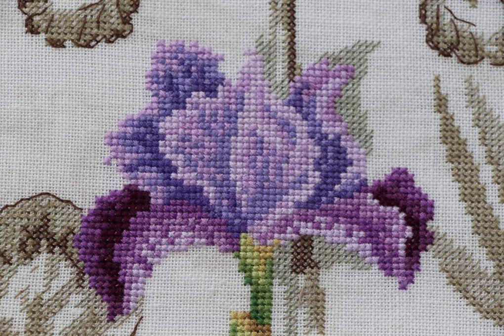 """Etude botanique """"L'Iris"""" de Véronique Enginger"""