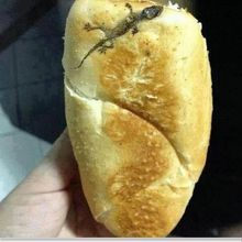 French Bread - by Lacoste