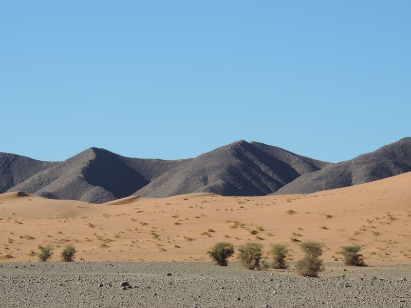 Le long de l'Erg Chebbi